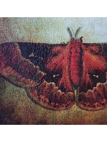 Papel para pared Muramour ANTICO (Wallpaper)